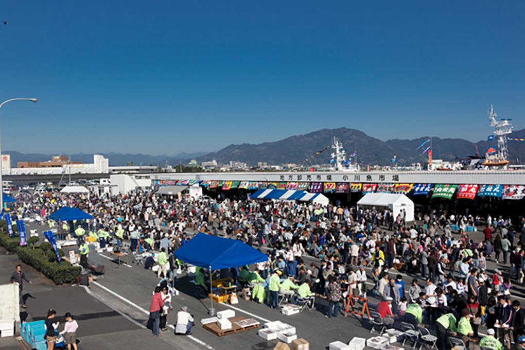 小川港さば祭り会場の様子