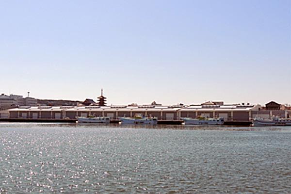 銚子市漁業協同組合地方卸売市場第1卸売場