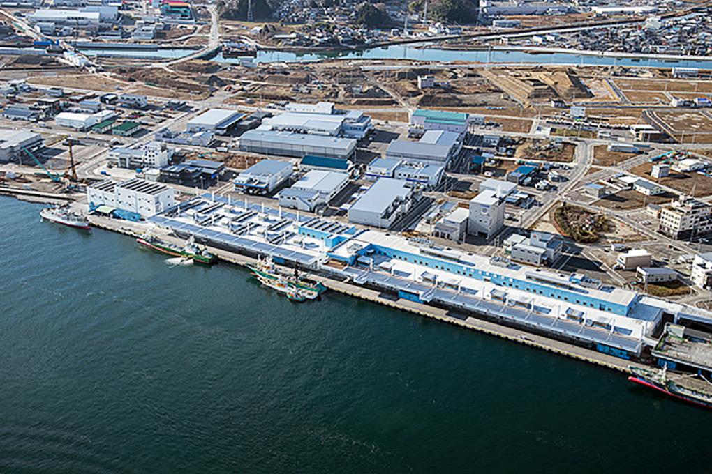 新気仙沼魚市場